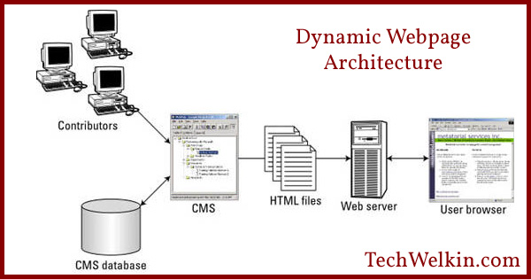 Difference between static and dynamic web pages for Web page architecture