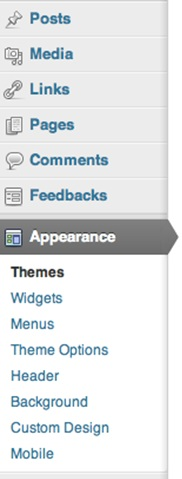 WordPress sidebar options