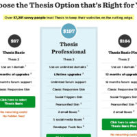 WordPress Thesis Framework Prices
