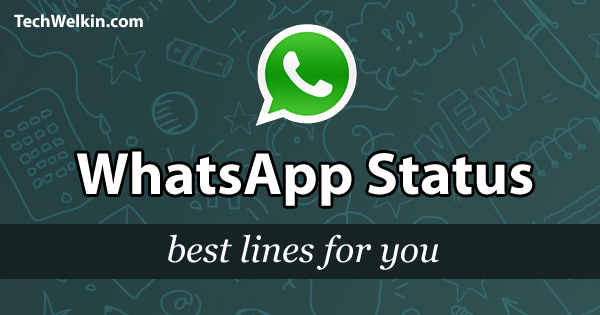 WhatsApp status need not be boring!