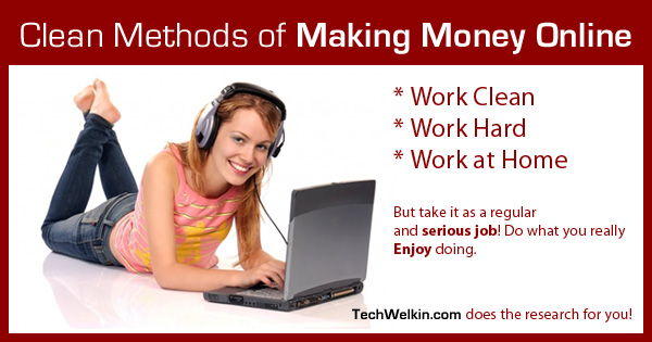 "This is banner image for ""Wondering how to earn money online? There are plenty of options for utilizing your skills to earn money from Internet."""