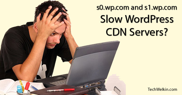 Slow CDN Servers of WordPress can bog down your website.