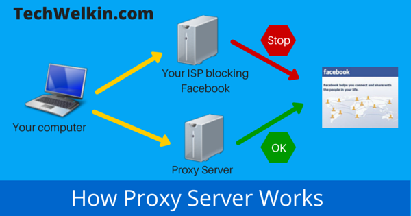 Working of a Web Proxy Server.