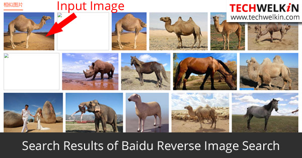 Reverse Image Search Results from Baidu (test was done on 28 October 2015)