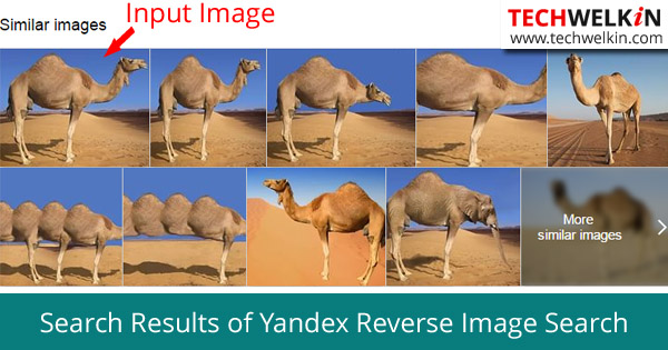 Reverse Image Search Results from Yandex (test was done on 28 October 2015)