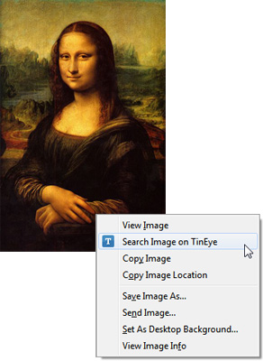 TinEye plugin adds the search option in the right-click menu.