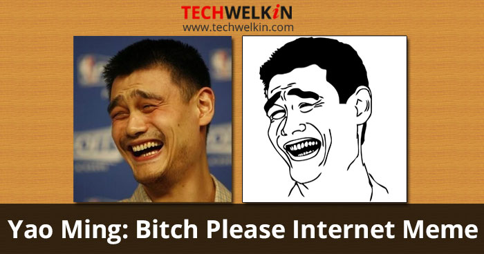 Yao Ming's face as Bitch Please Internet Meme