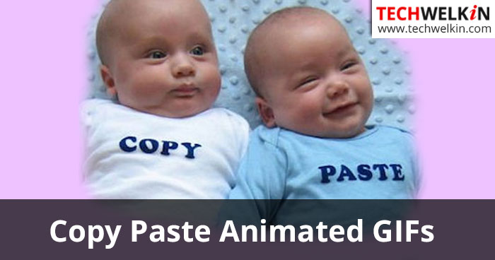 copy paste animated gif images