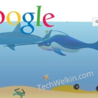 Google gravity underwater