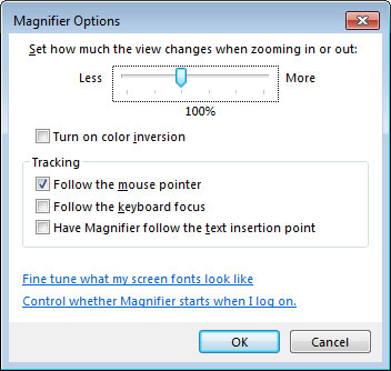 Screen magnifier options