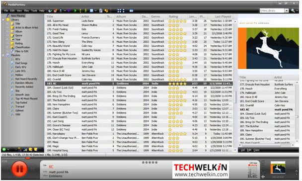 Best iTunes Alternatives: Free Download of Music Library